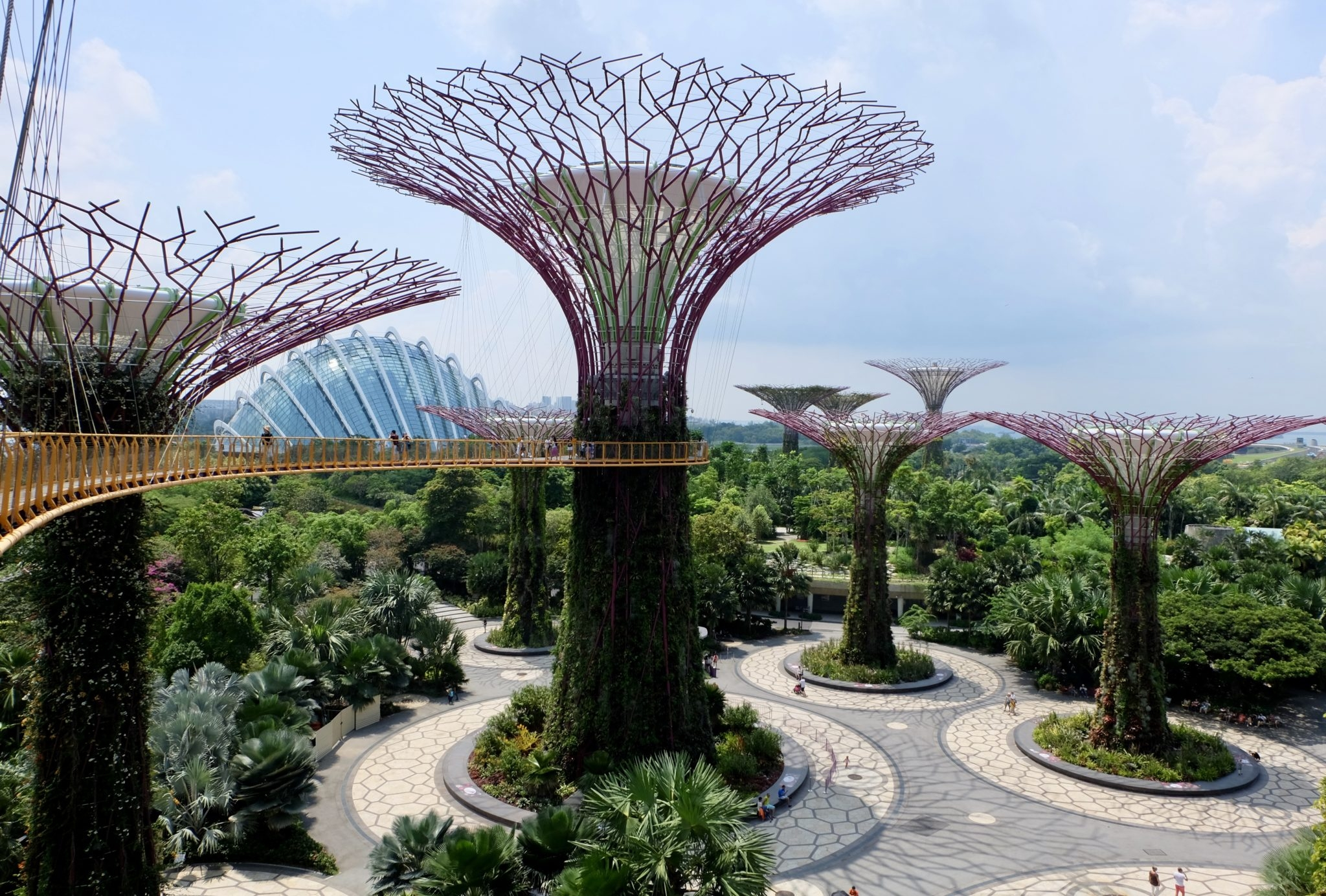 Super Trees Singapore