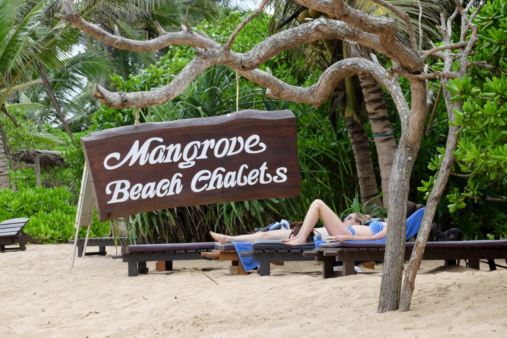Mangrove Beach Cabanas and Chalets Tangalle