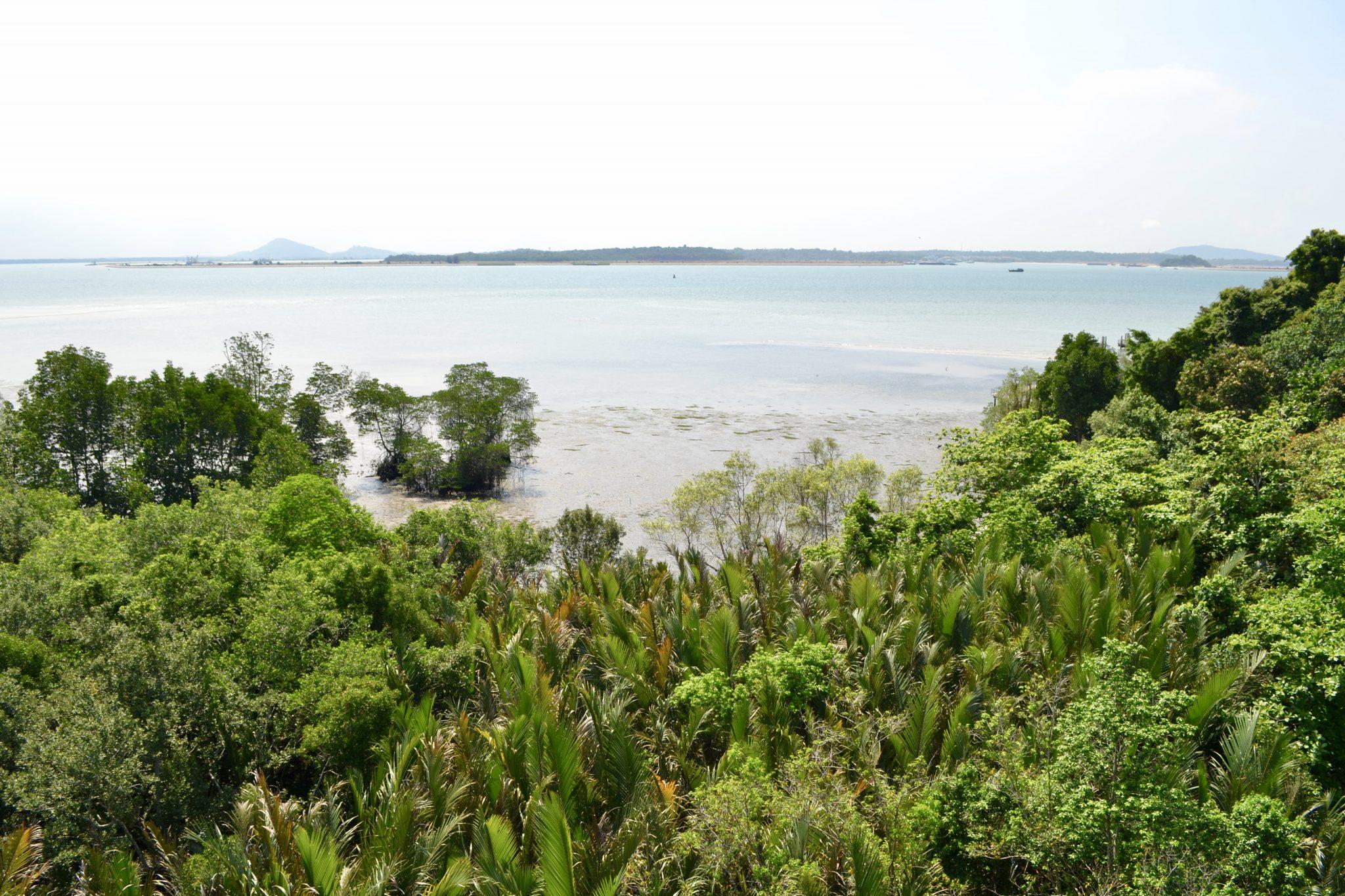 Pulau Ubin Aussicht