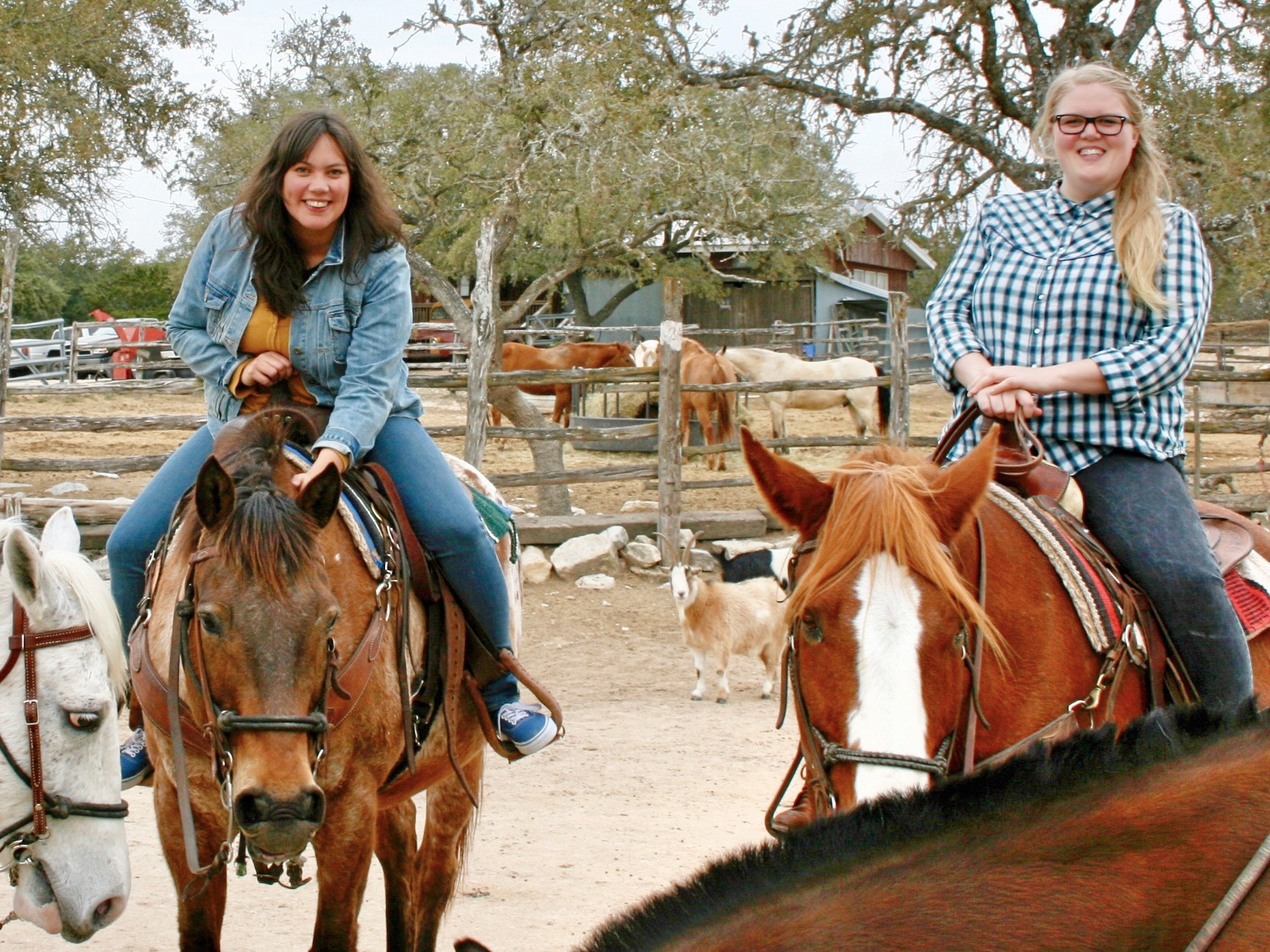 Cowgirl Life