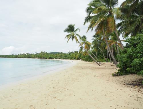 Mit Condor nonstop von München in die Karibik