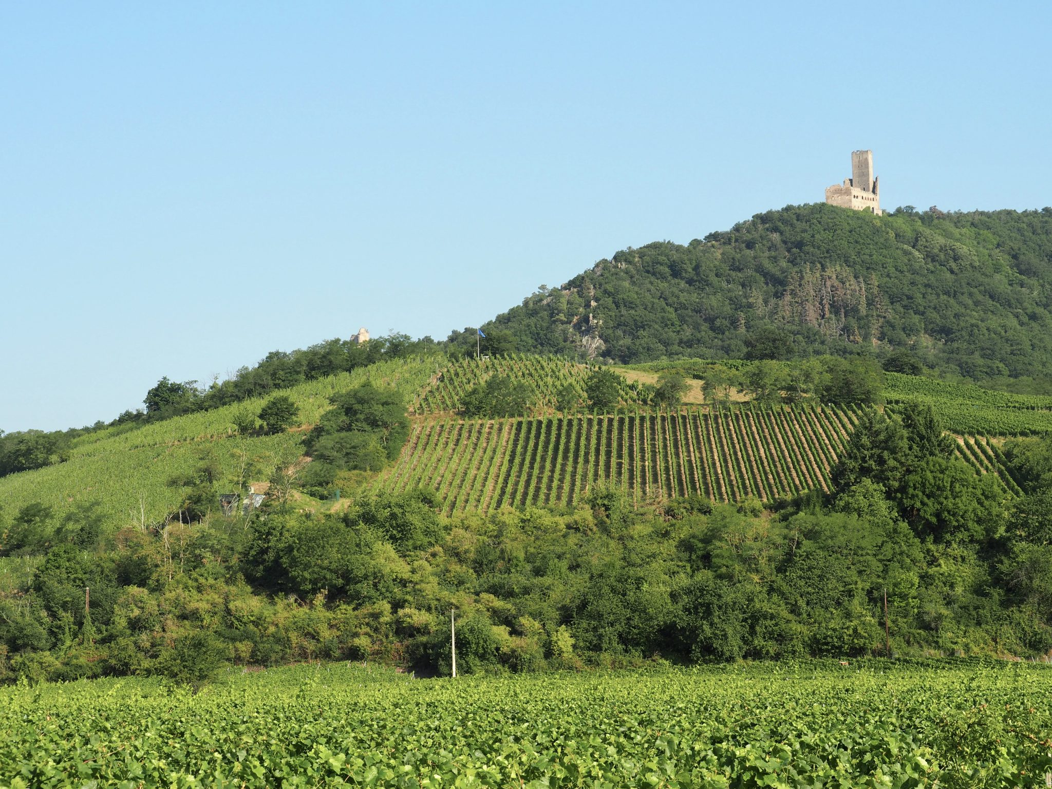 Elsass Frankreich