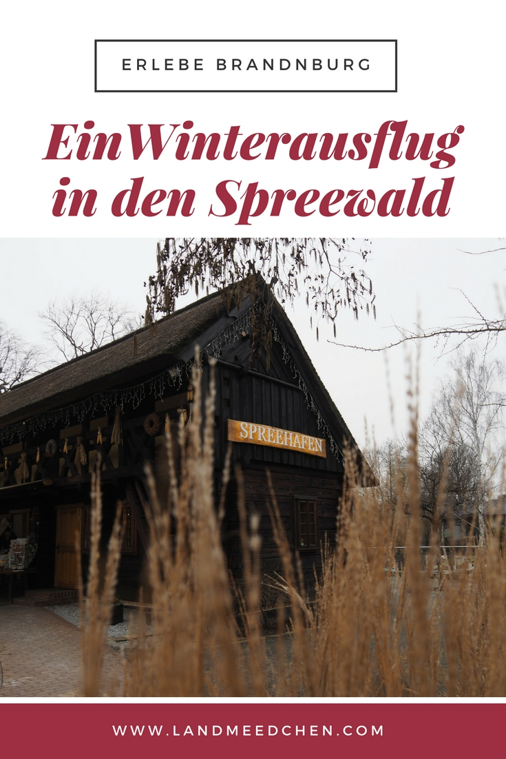 Winterausflug Spreewald
