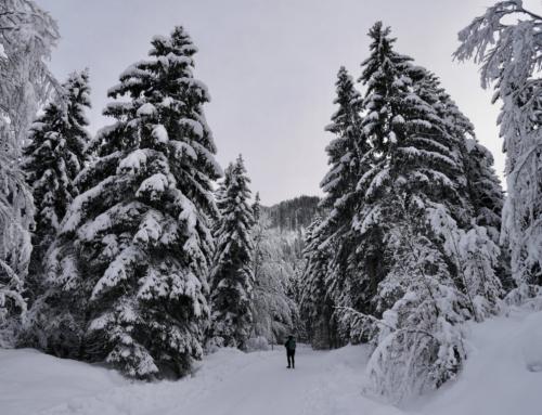 Winterzauber im Kufsteinerland