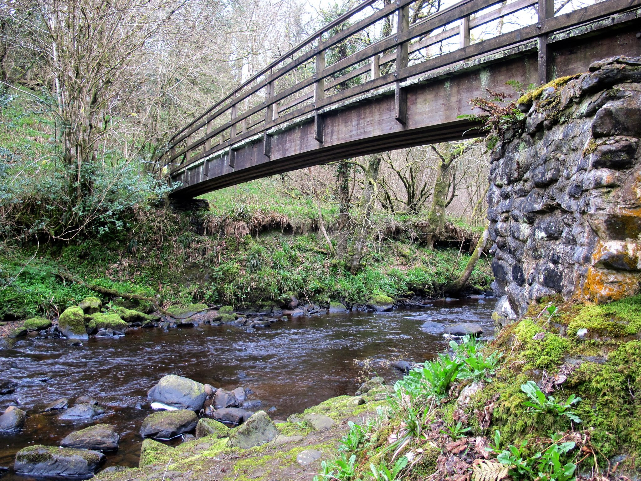 Ness Woods Derry Nordirland