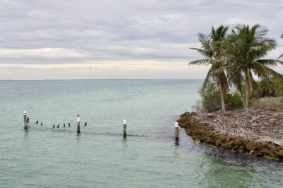 Captiva Cruises Florida