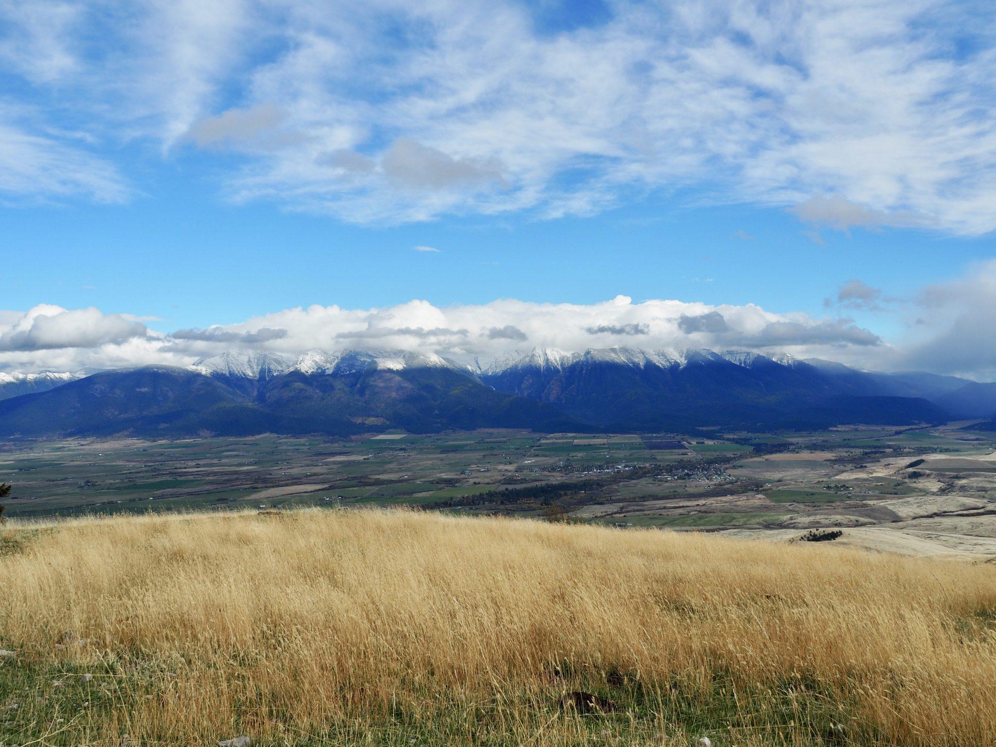 National Bison Range Montana USA Mission Mountains