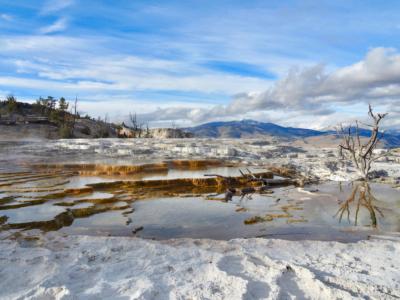Mammoth Hot Springs Yellowstone National Park