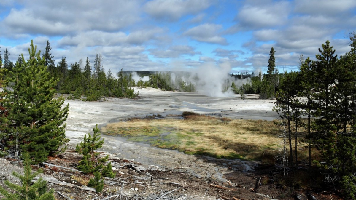 Norris Geyser Basin Yellowstone National Park