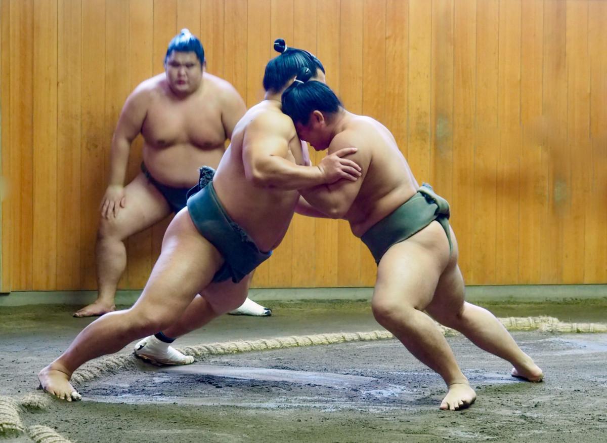 Sumo Training Dewano Umi School Tokyo