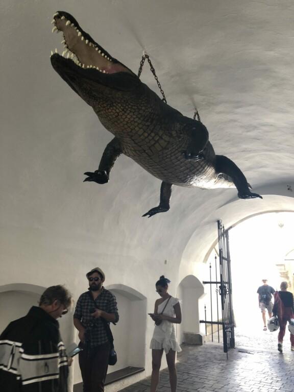Brno Drache Krokodil Tschechien