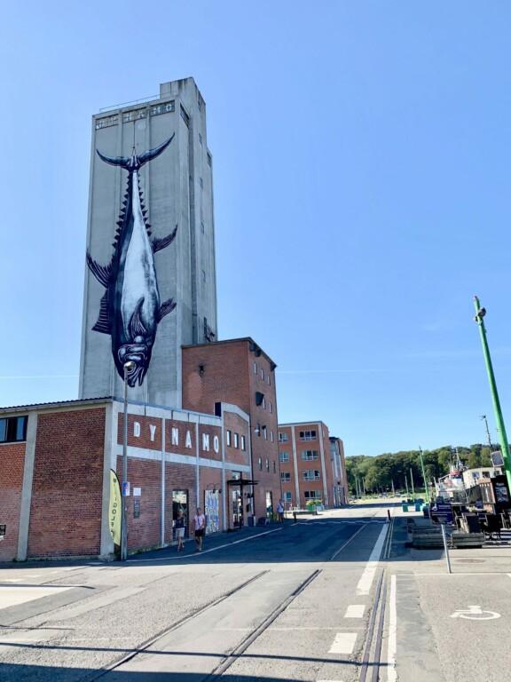 Hafenviertel Odense Denmark