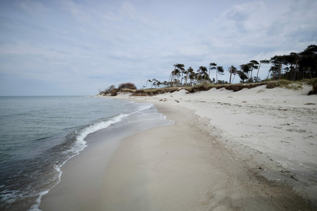 Weststrand Darß Ostsee