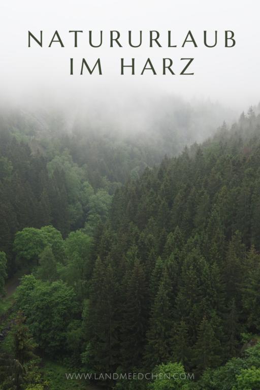 Natururlaub im Harz Pinterest