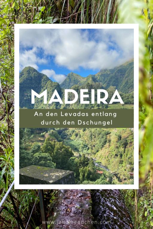 Madeira_An den Levadas entlang durch den Dschungel_Pinterest