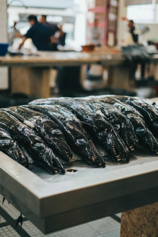 Mercado dos Lavradores Fischhalle Funchal