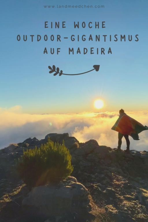 Madeira Outdoor Gigantismus Pinterest