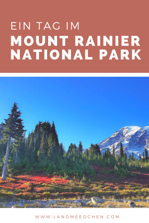 Ein Tag im Mount Rainier National Park Pinterest