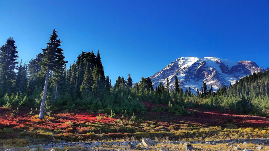Mount Rainier Paradise Fall