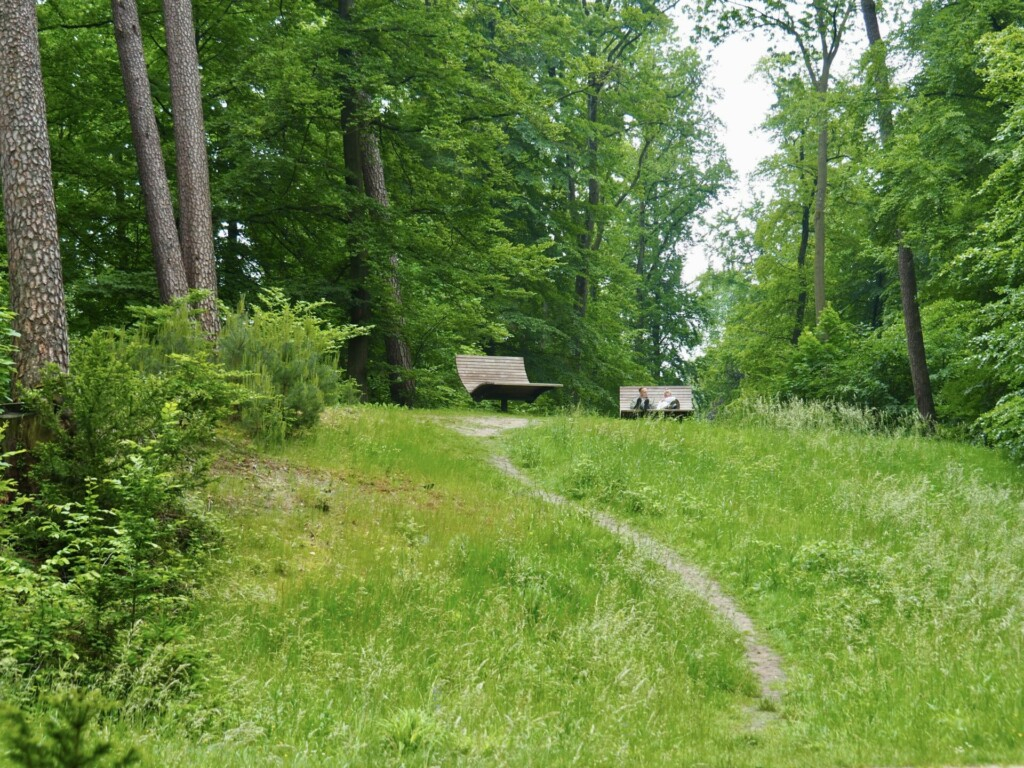 Heilwald Bad Lippspringe