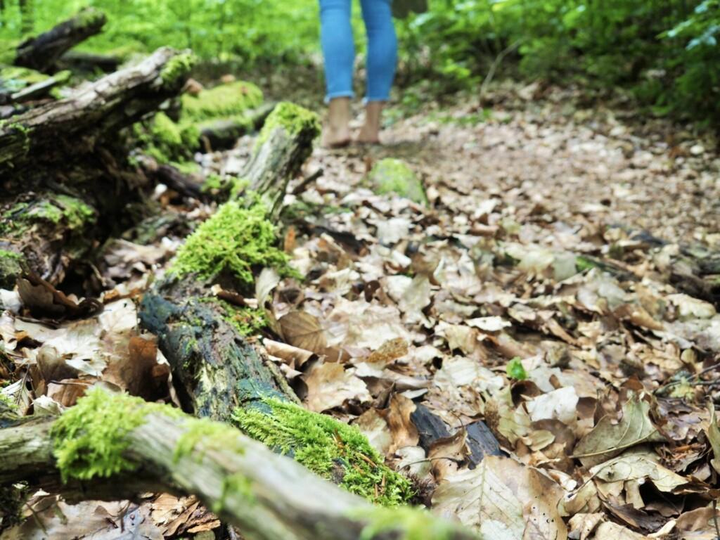 Barfuß Wandern Teutoburger Wald