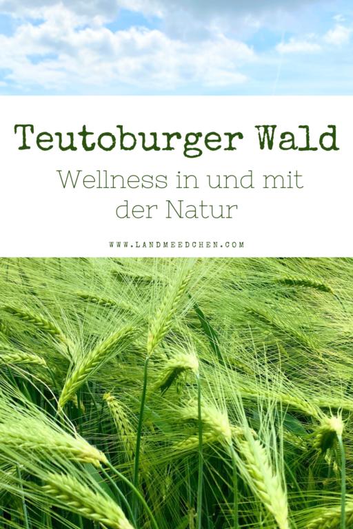 Teutoburger Wald Wellness in und mit der Natur Pinterest