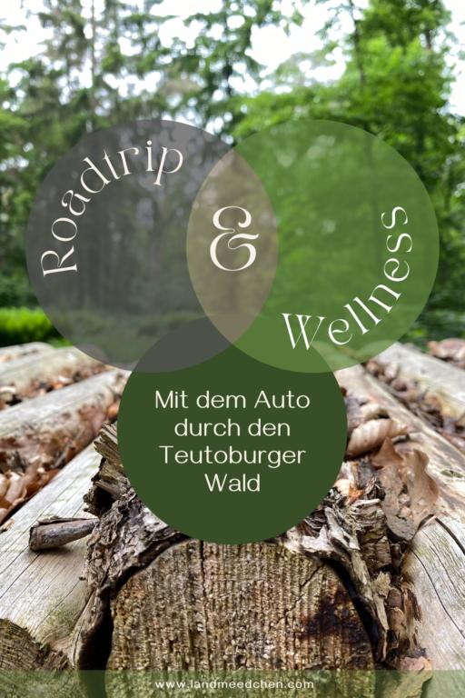 Mit dem Auto durch den Teutoburger Wald Pinterest